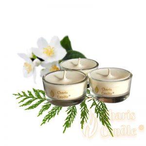 Charis Candle ® - Lumânări pastilă Tealight Comfort