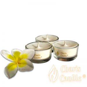 Charis Candle ® - Lumânări pastilă Tealight Frangipani
