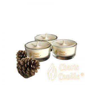 Charis Candle ® - Lumânări pastilă Tealight Pine