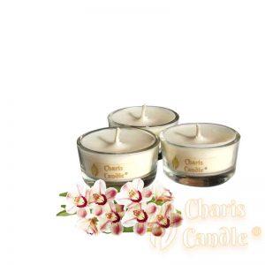 Charis Candle ® - Lumânări pastilă Tealight Tropical